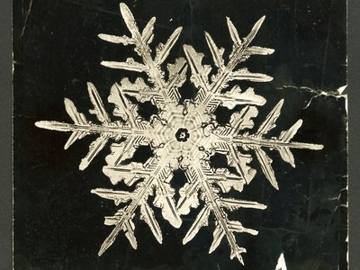 """Bentley found """"each snowflake is as different from its fellows as human beings are from each other."""""""