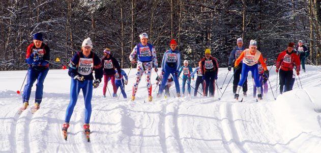 Vasaloppet skiers