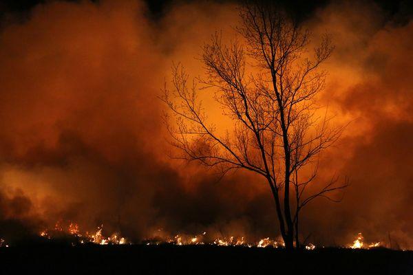Prairie Fire thumbnail