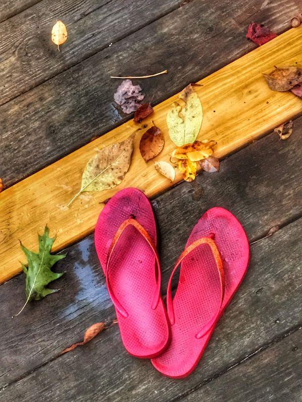 Summer Meets Autumn thumbnail