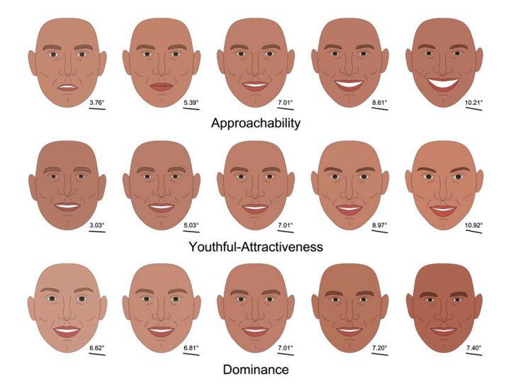Computer-generated faces representing a spectrum of first impressions. Photo: Vernon et al., PNAS