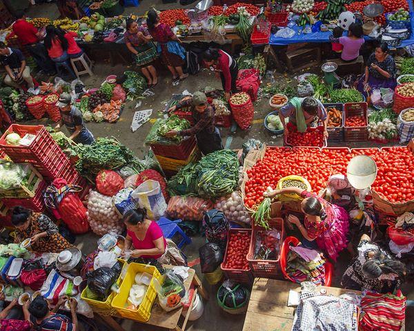 Market Day thumbnail