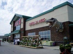 20110520083153calgary-tyrannosaurus-wall-300x225.jpg