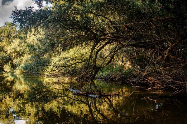 Danube Delta canal thumbnail