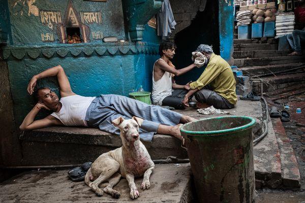 Varanasi Street Scene thumbnail