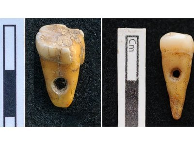 """Lead author Scott Haddow says, """"Given the small sample size, the ultimate meaning of the human teeth pendants will remain elusive until new findings ... can help us better contextualize [them]."""""""
