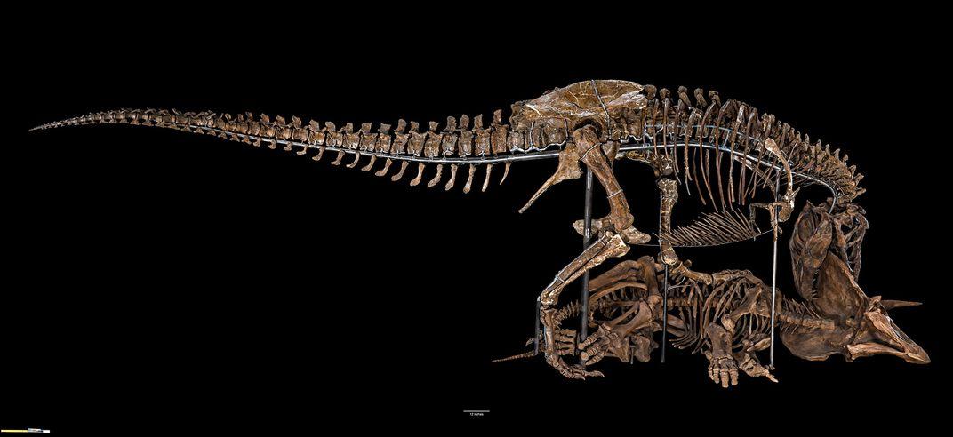 Meet the Dinos of 'Deep Time'