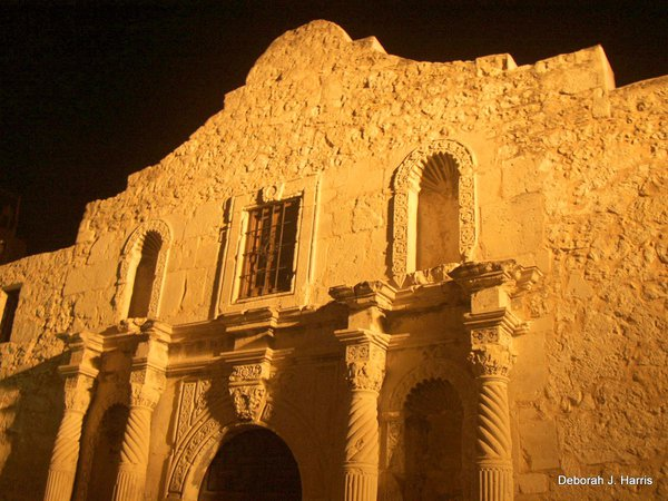 Night view of the Alamo thumbnail