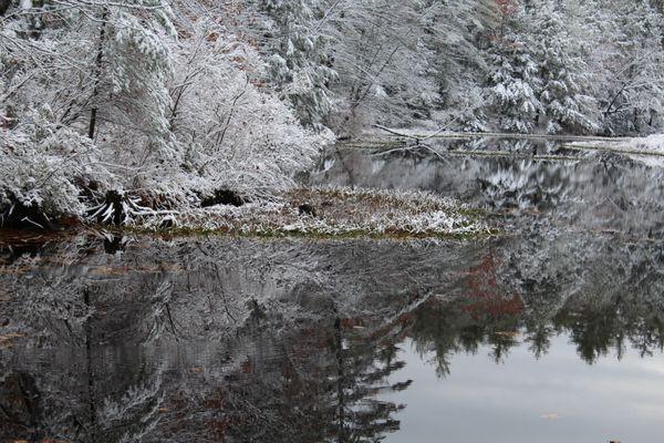 swirl in pond thumbnail