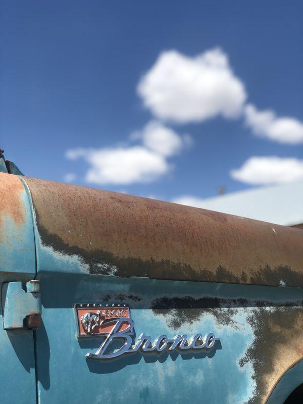 New Mexico Bronco thumbnail