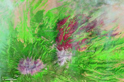 Colorado Wildfires Are So Big They Can Be Seen From Space