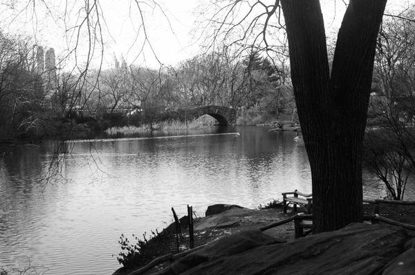 Central park thumbnail
