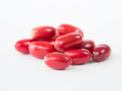 Miracle fruit, or Synsepalum dulcificum, grows on bushy trees native to West Africa.