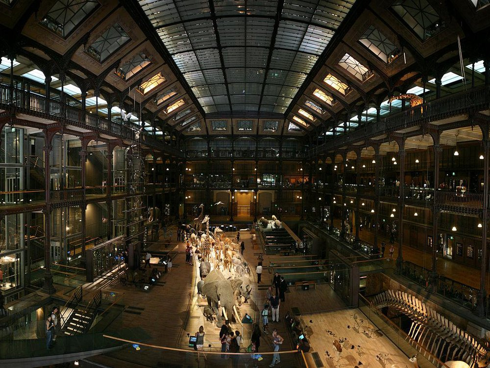 Grand Gallery of Evolution in the National Museum of Natural History in Paris, France
