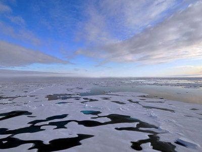 While this year's Arctic sea ice extended further than last year's, there still wasn't as much of it as there was only two decades ago. Thinner and younger sea ice in winter and less ice in the summer are two of the many elements of the Arctic's new reality.