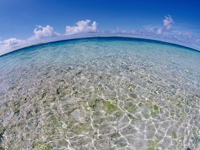 Clear tropical waters at the Pitcairn Islands.