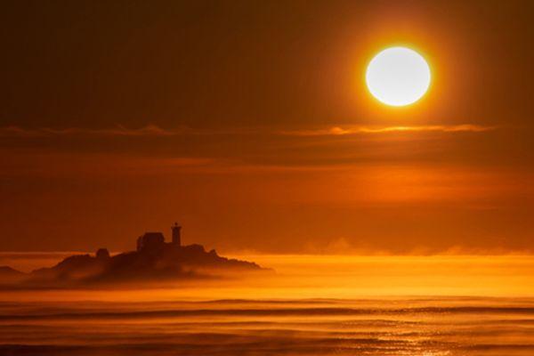 Golden Fog thumbnail