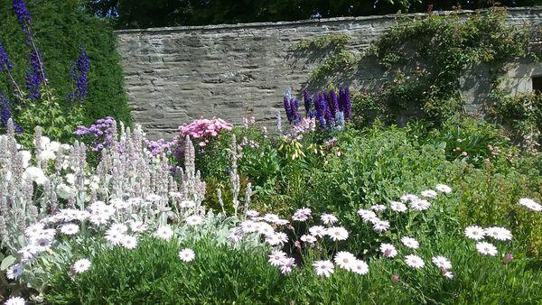 Spring Garden thumbnail