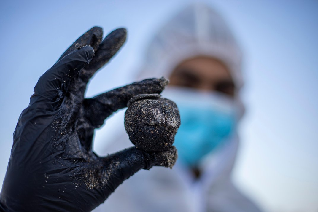 Oil Spill Off Israeli Coast Covers Beaches and Wildlife in Tar
