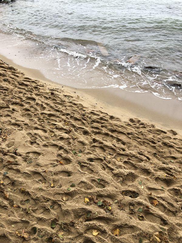 Footprints thumbnail