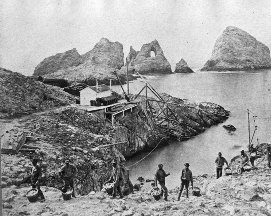 When California Went to War Over Eggs