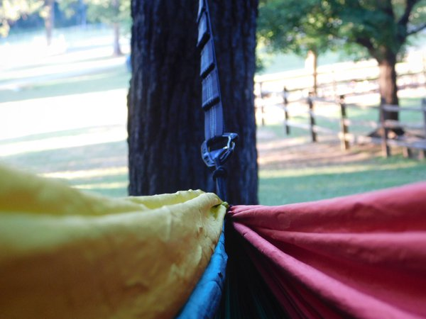 A View From A Hammock thumbnail
