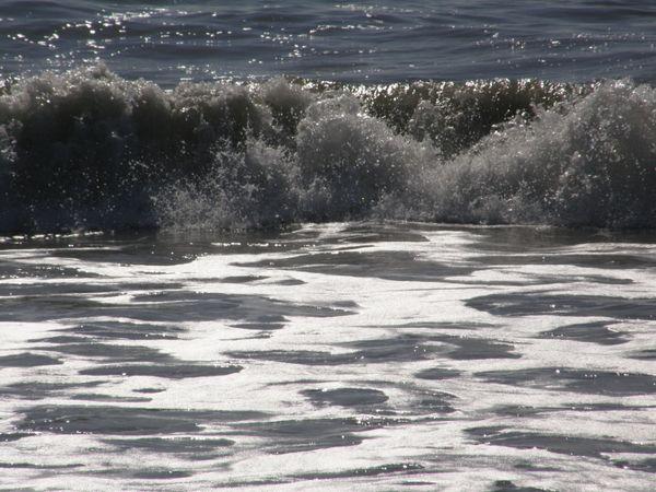 WAVE SERIES  thumbnail