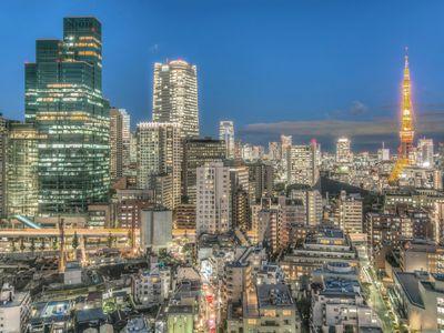 The dense metropolis of Tokyo sparkles like an urban playground at night.