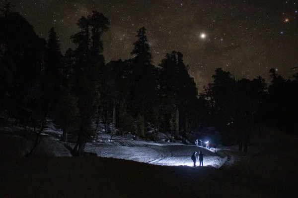 Trekkers walking under a starry sky as seen from a meadow, on the way to Kedarkantha peak, Uttarakhand, India. thumbnail