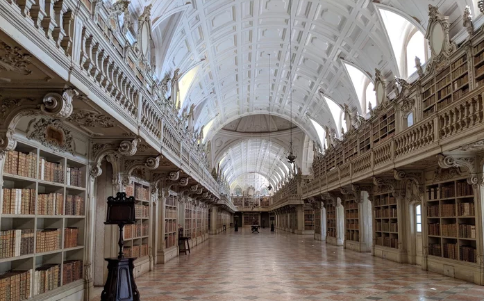 These Portuguese Libraries Are Infested With Bats—and They Like It That Way