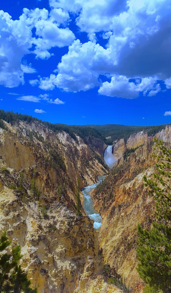 Artist Point at the Yellowstone National Park thumbnail