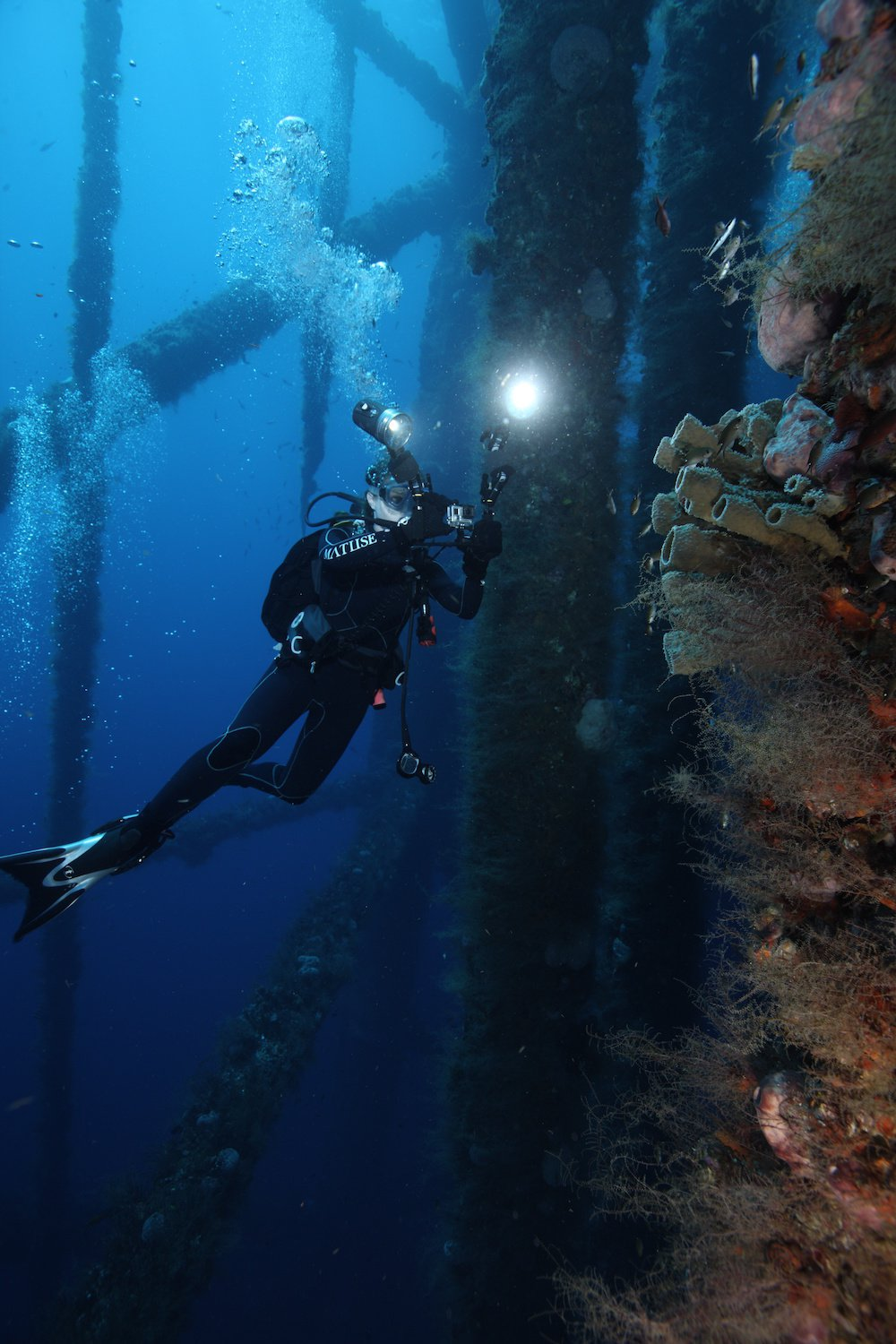 The Gulf of Mexico's Hottest Diving Spots Are Decommissioned Oil Rigs