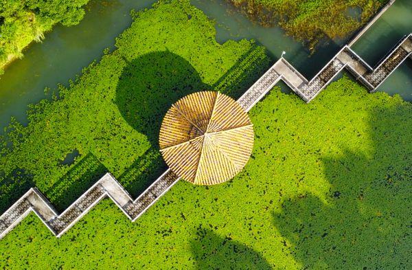Retreat Garden in Hong Kong thumbnail