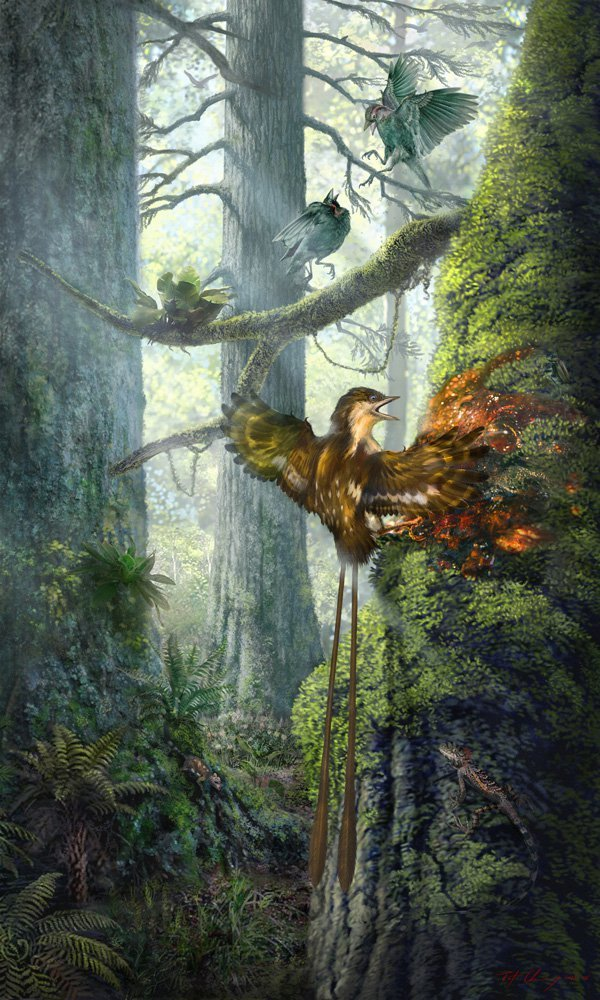 99-Million-Year-Old Bird Wings Found Encased in Amber