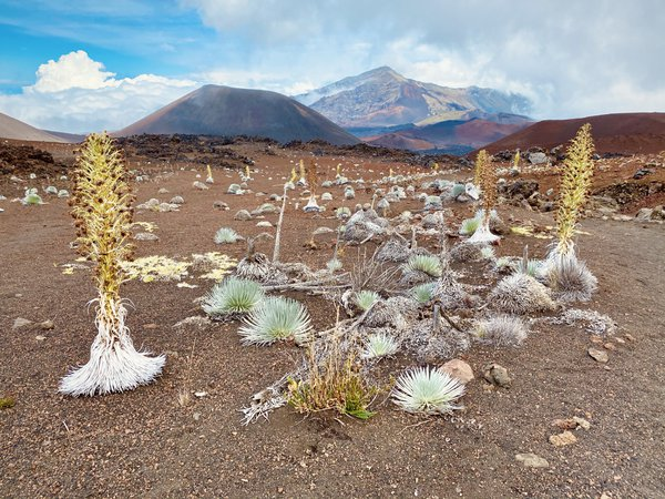 Off Planet in the Haleakala Volcanic Crater thumbnail