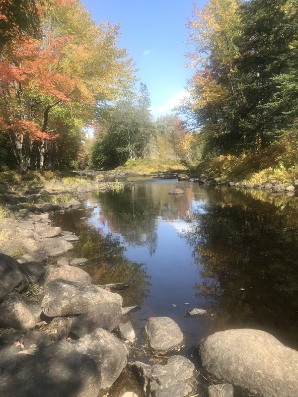Autumn Peace thumbnail