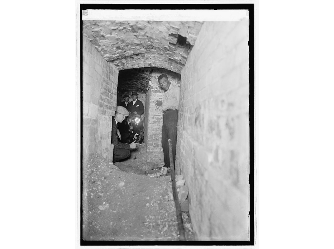 The Bizarre Tale of the Tunnels, Trysts and Taxa of a Smithsonian Entomologist