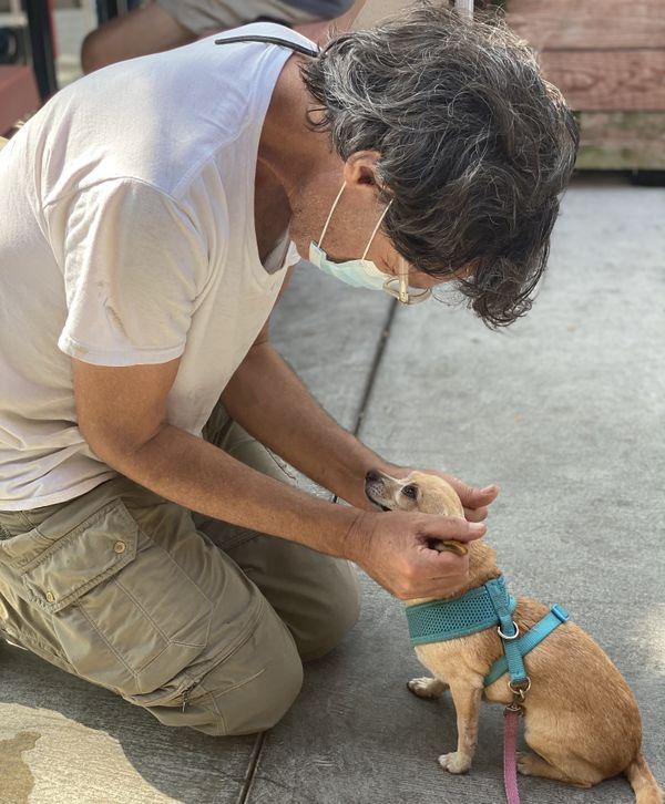 A dog meets a new friend. thumbnail