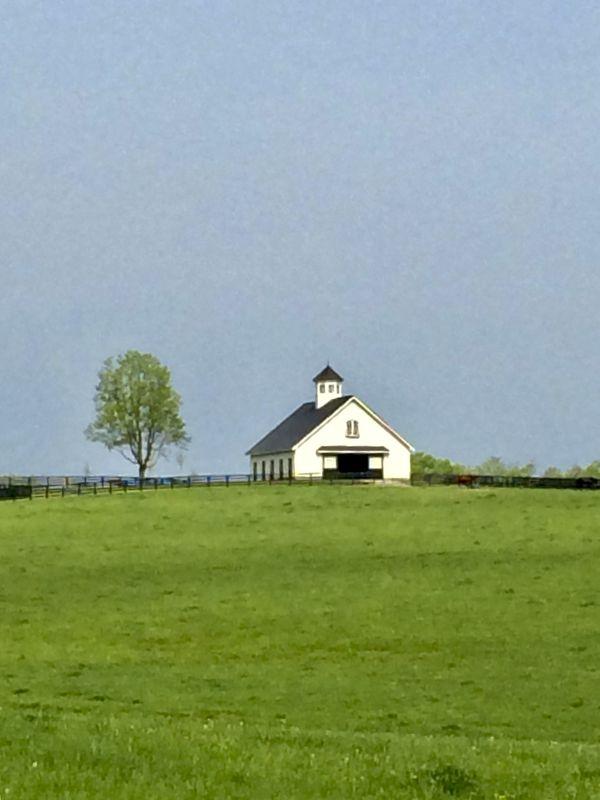 Beautiful bluegrass thumbnail