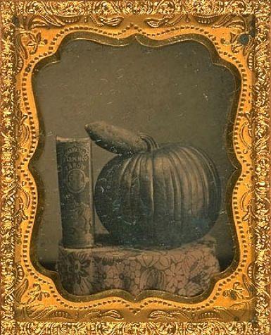 pumpkin_AAM_oct19.jpg