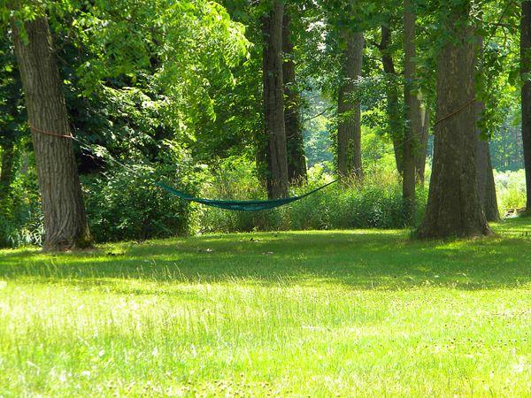 A lonely hammock thumbnail