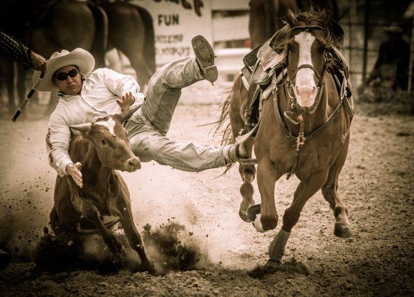 Calf Roping at the July 4th Ten Sleep, WY Rodeo thumbnail
