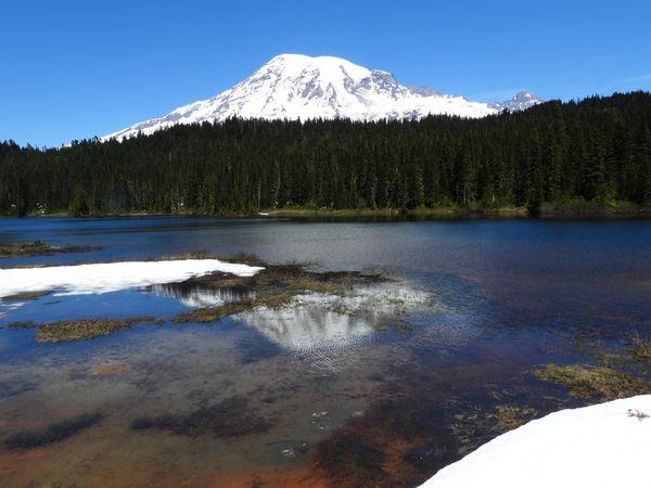 Mount Rainier reflection in Reflection Lake thumbnail