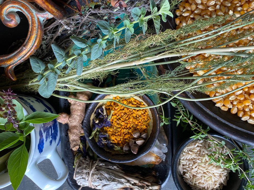 A colorful and artfully arranged assortment of herbs, spices, corn, and a white mug with blue designs clustered together on a table, viewed from above
