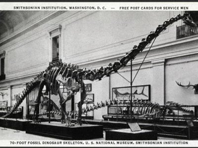 Free post cards were given to service members when they visited the US National Museum (now the National Museum of Natural History) in the 1940s. (Smithsonian Institution Archives, Image # SIA2013-07711)