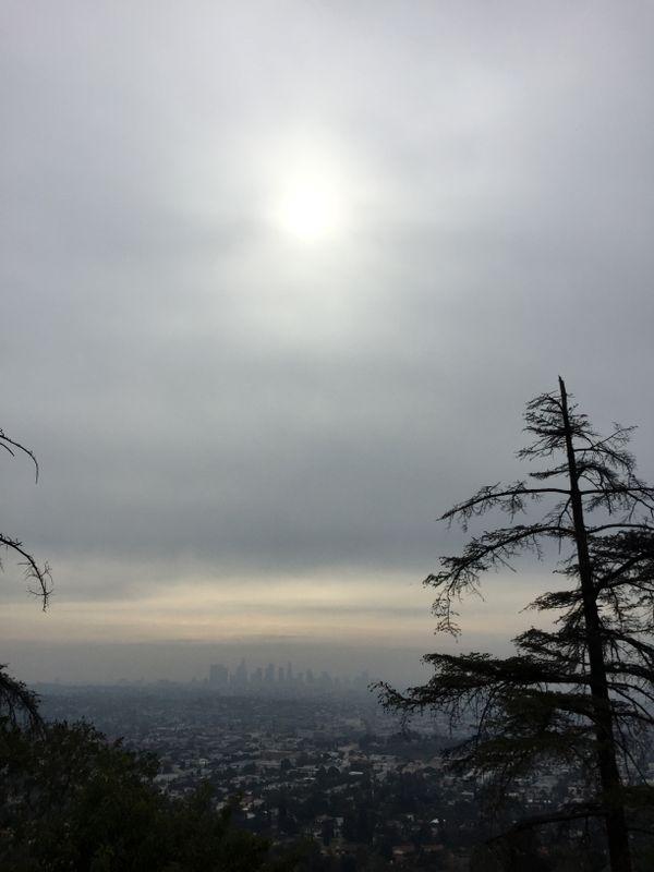 A View of LA thumbnail