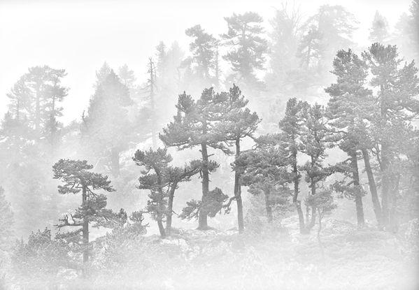 Karstic landscape thumbnail