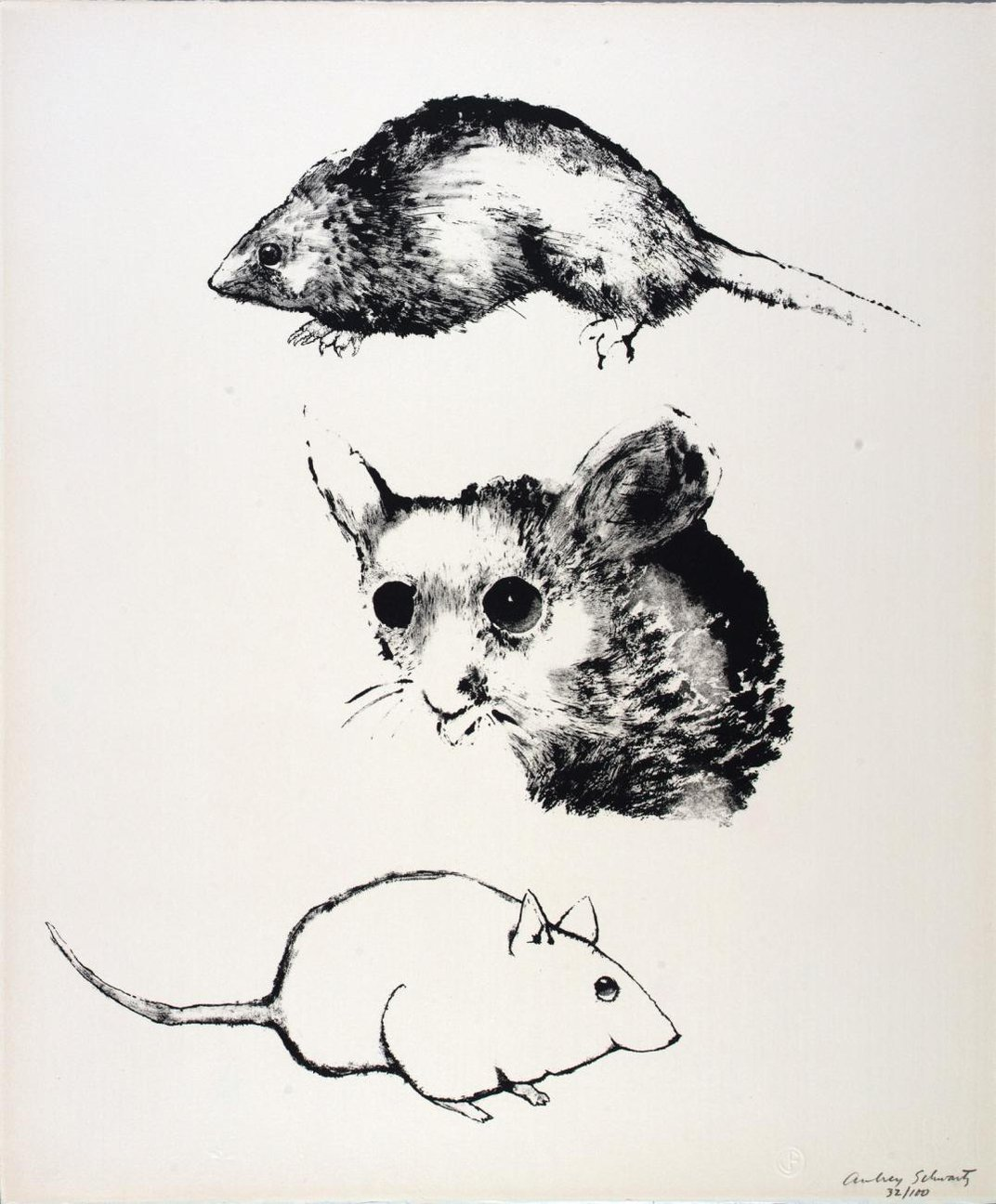 A drawing of mice.