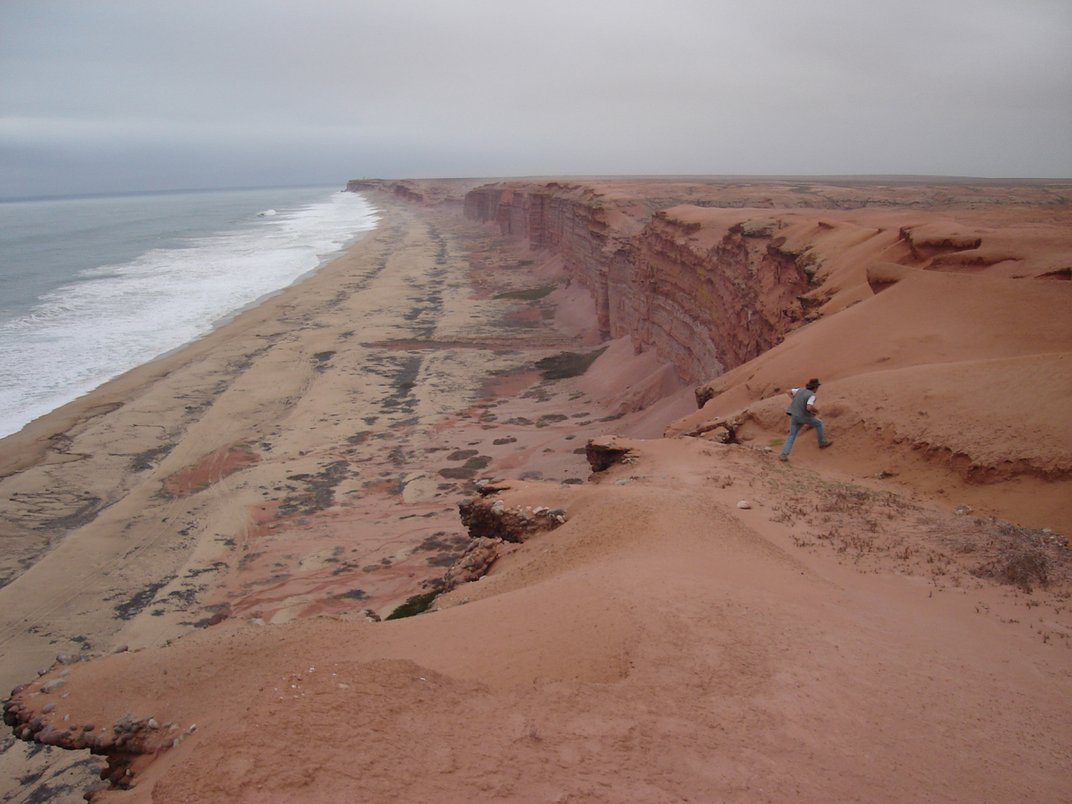 Modern cliffs of coastal Angola where Projecto PaleoAngola paleontologists excavate fossils of life that once lived in Angola's ancient seas.