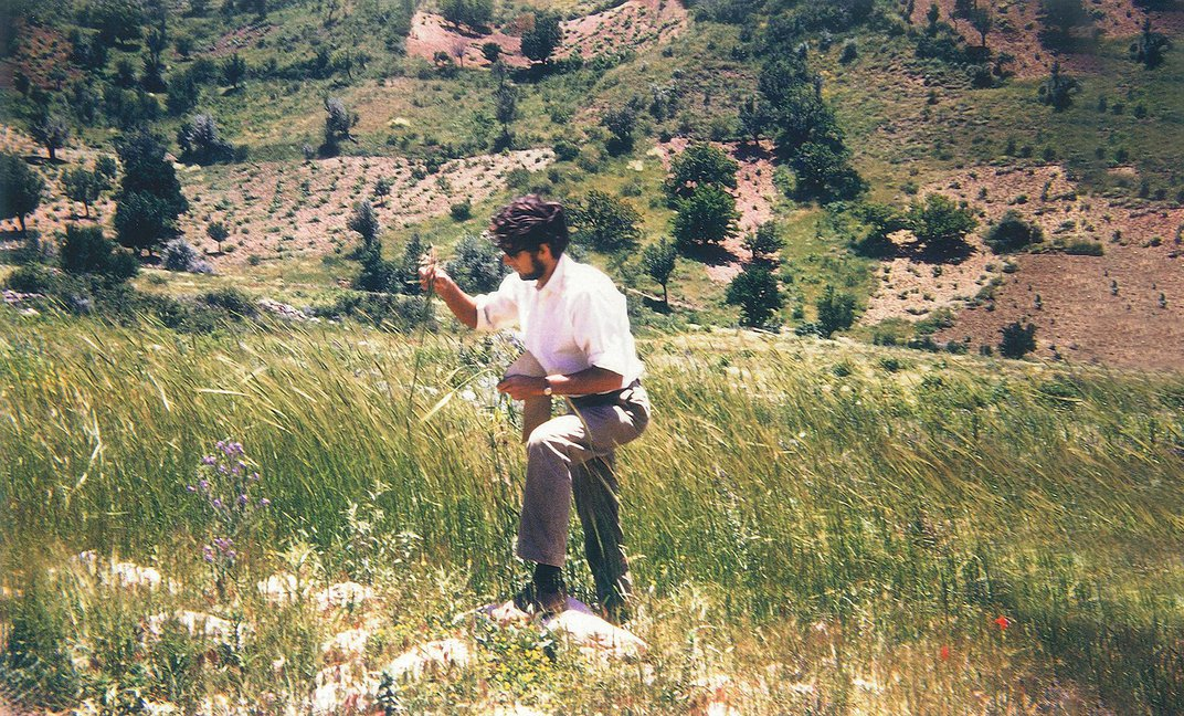Why British Archaeologists Are Battling With the Turkish Government Over Seeds